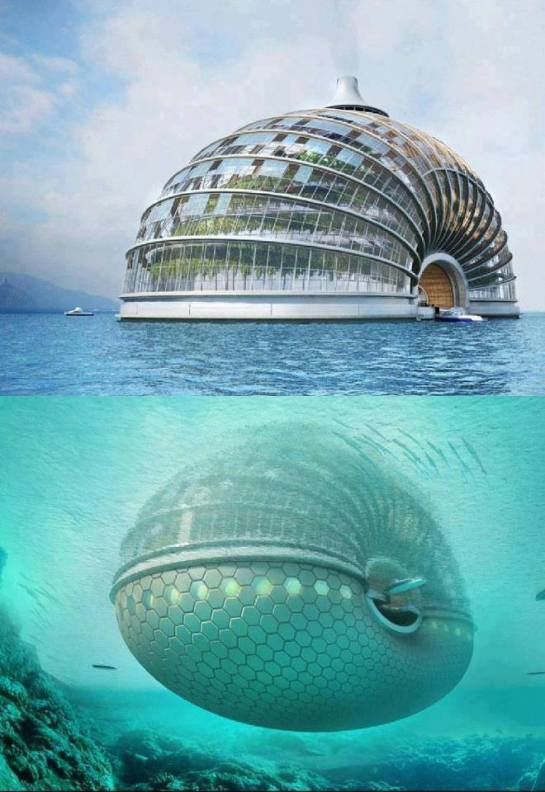 Ark-Hotel